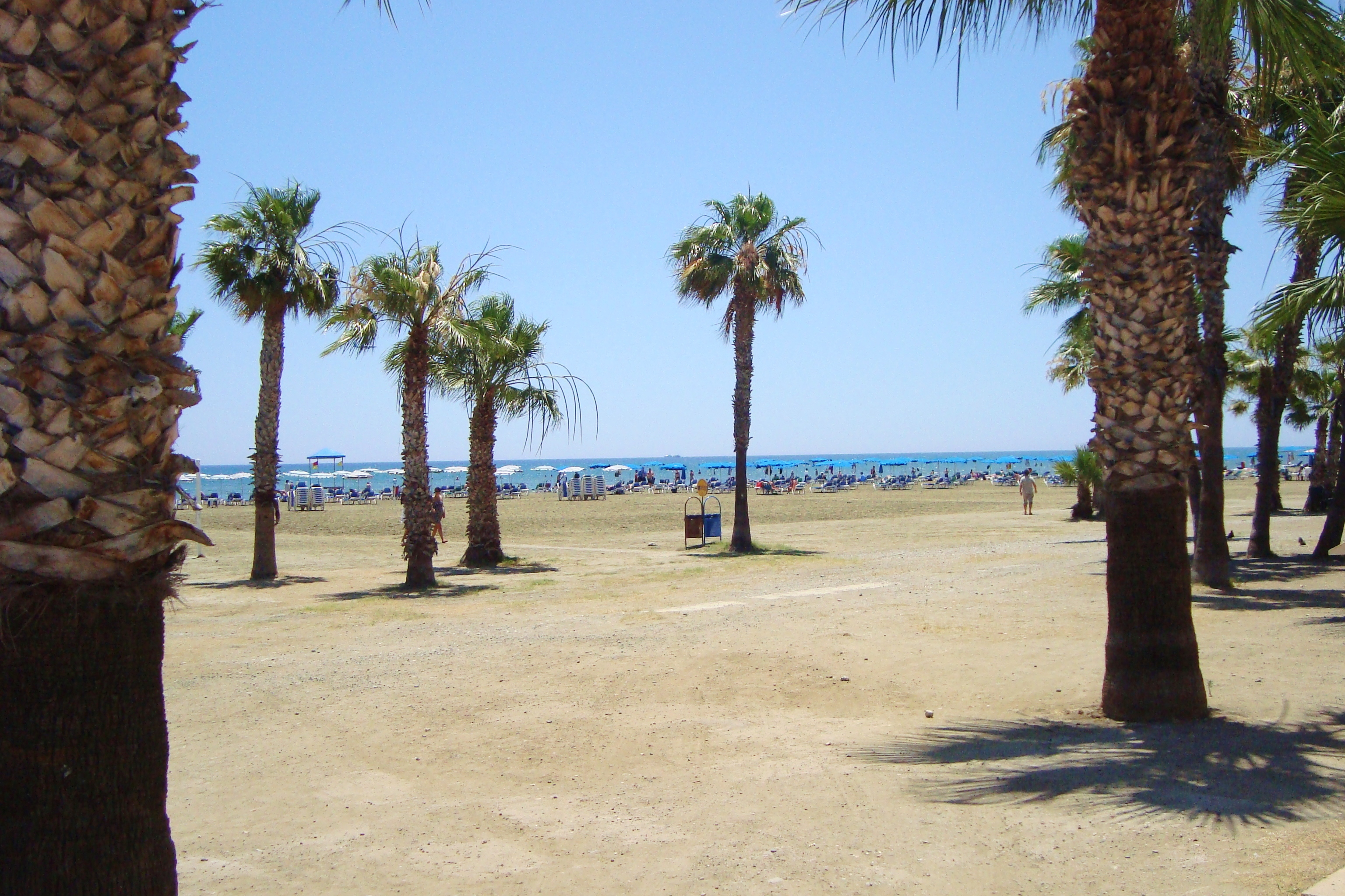 Foinikoudes beach in Larnaca